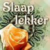 Slaap lekker Krabbels voor Hyves en Facebook
