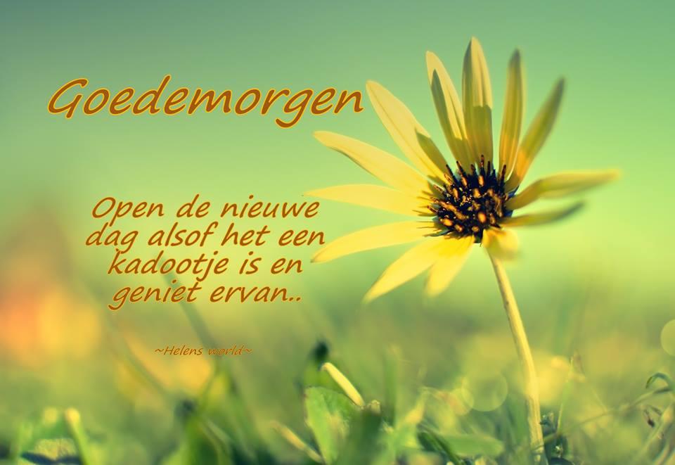 Goedemorgen Open de nieuwe dag...