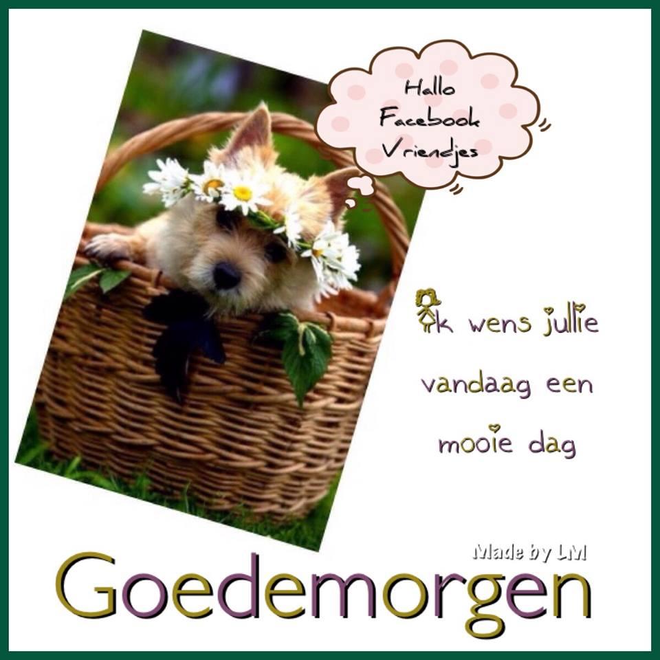 Hallo Facebook Vriendjes. Ik wens jullie vandaag een mooie dag. Goedemorgen