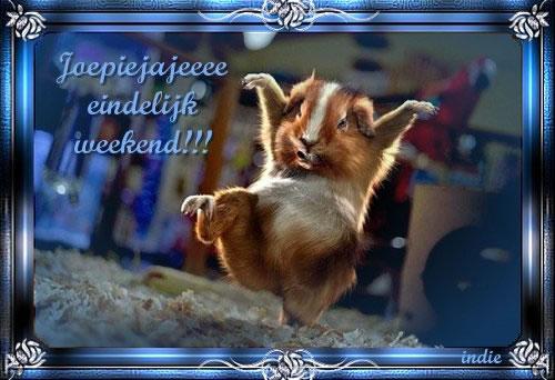 Joepiejajeeee eindelijk weekend!!!