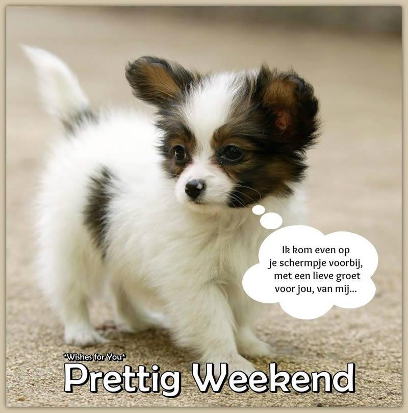 Ik kom even op je schermpje voorbij, met een lieve groet voor jou, van mij... Prettig Weekend