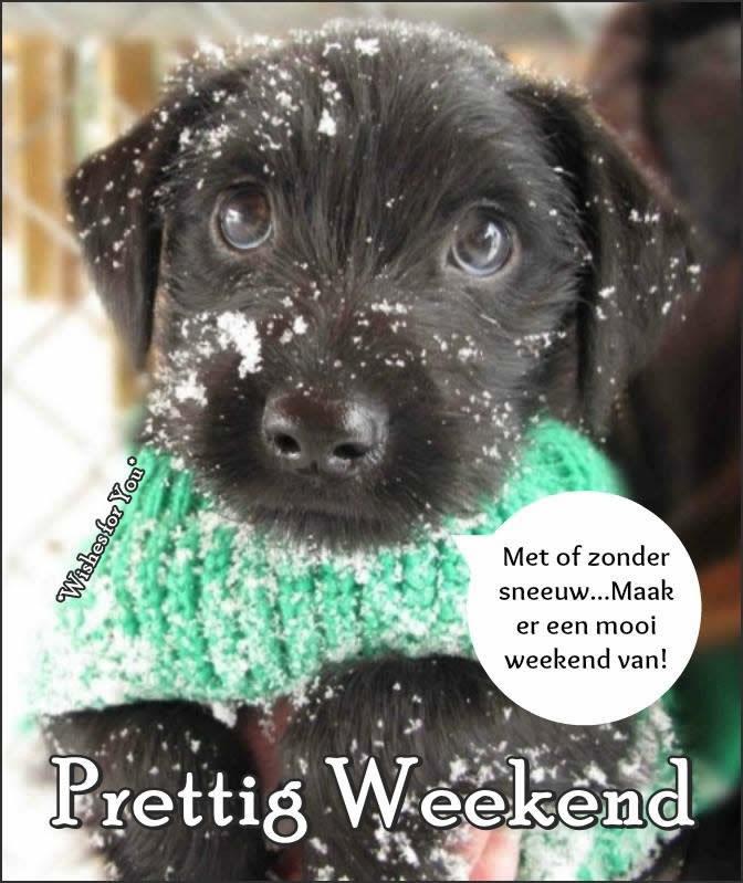 Met of zonder sneeuw... Maak er een mooi weekend van! Prettig Weekend