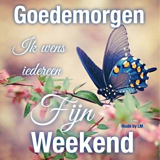 Goedemorgen, Ik wens iedereen fijne weekend
