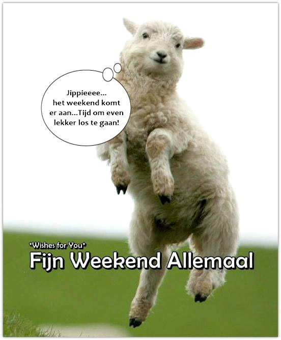 Jippieeee... het weekend komt...