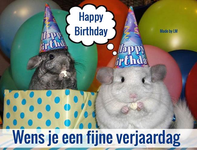 Wens je een fijne verjaardag...