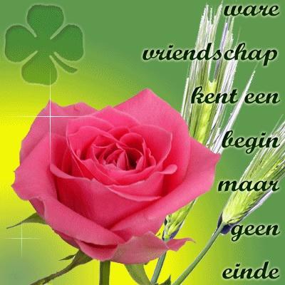 Ware vriendschap kent een begin maar geen einde