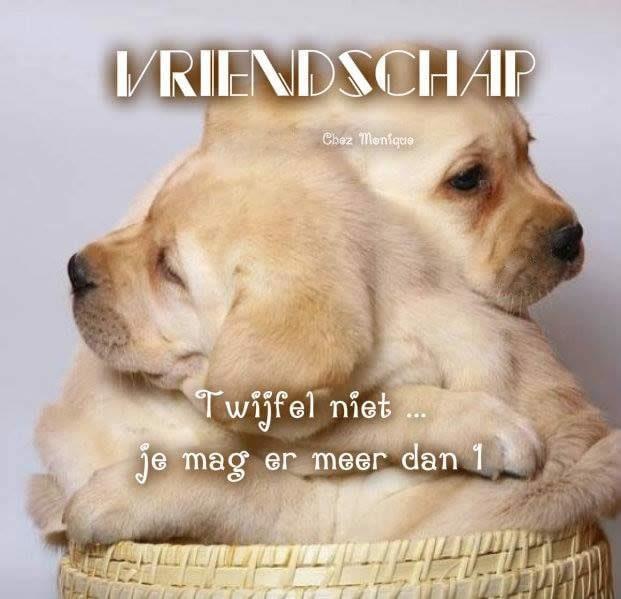 Vriendschap twijfel niet... je mag er meer dan 1