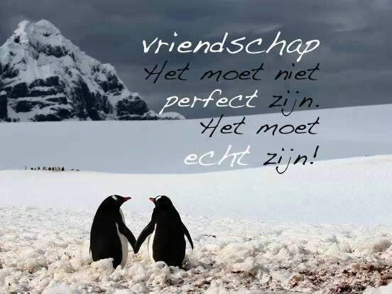 Vriendschap. Het moet niet perfect zijn. Het moet echt zijn!