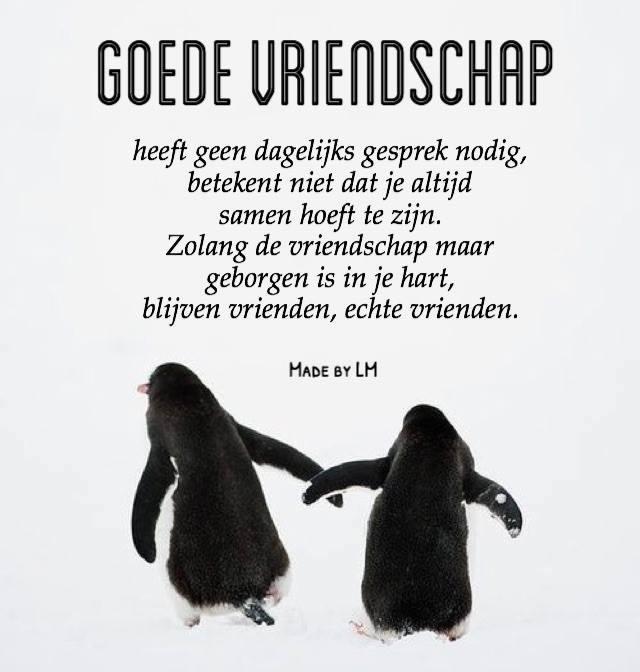 Goede vriendschap heeft geen dagelijks gesprek nodig, betekent niet dat je altijd samen hoeft te zijn. Zolang de vriendschap...