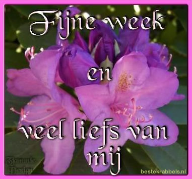 Fijne week en veel liefs van mij