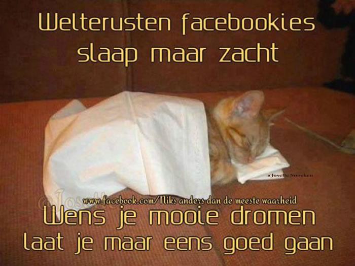 Welterusten facebookies, slaap maar...