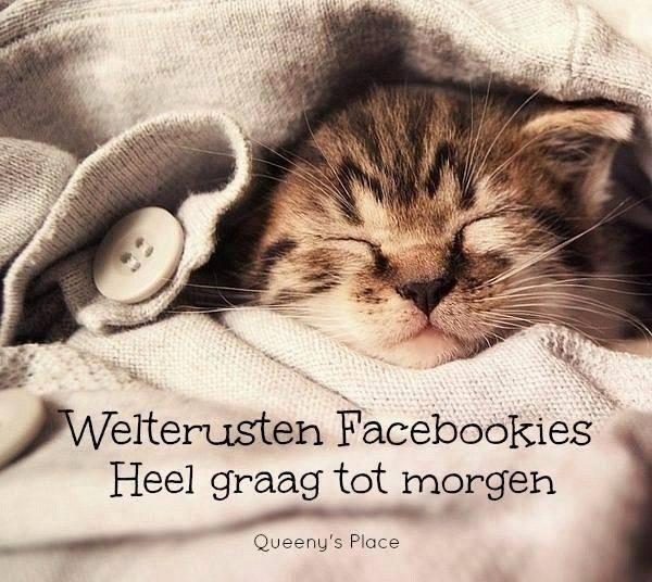 Welterusten Facebookies Heel...