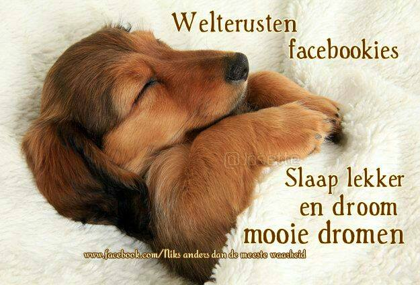 Welterusten facebookies Slaap lekker en droom mooie dromen Plaatjes