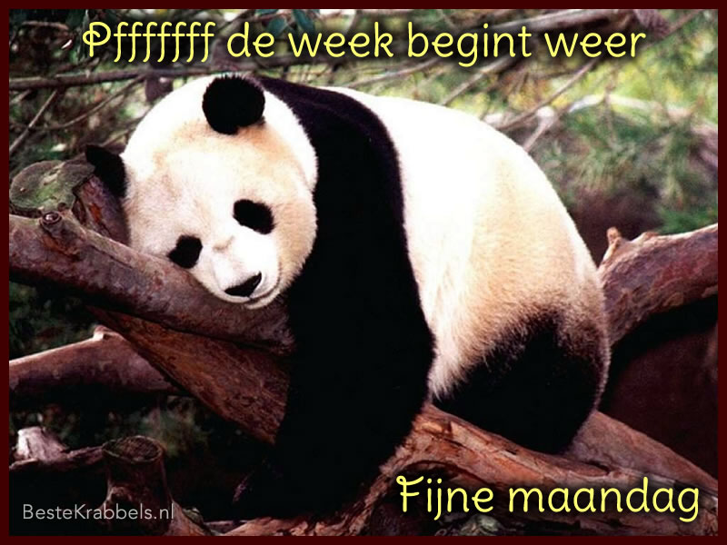 Pfffff de week begint weer fijne maandag