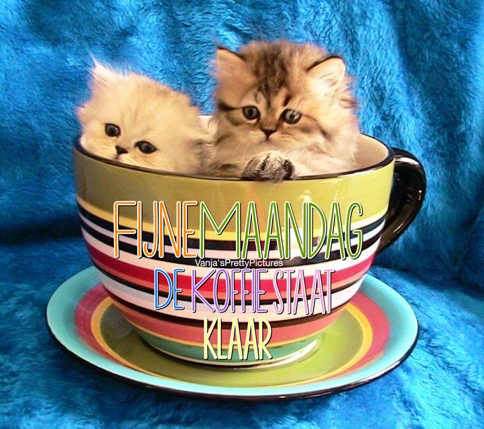 Fijne Maandag, de koffie staat...