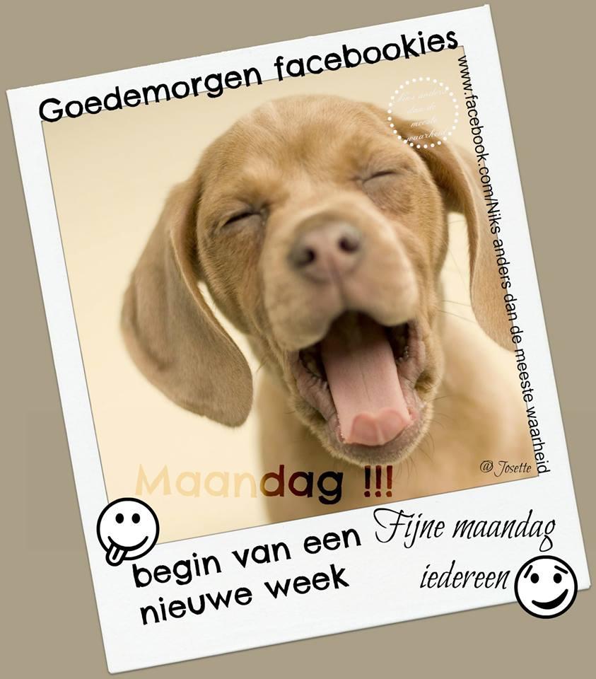 Goedemorgen facebookies Maandag!!! Begin...