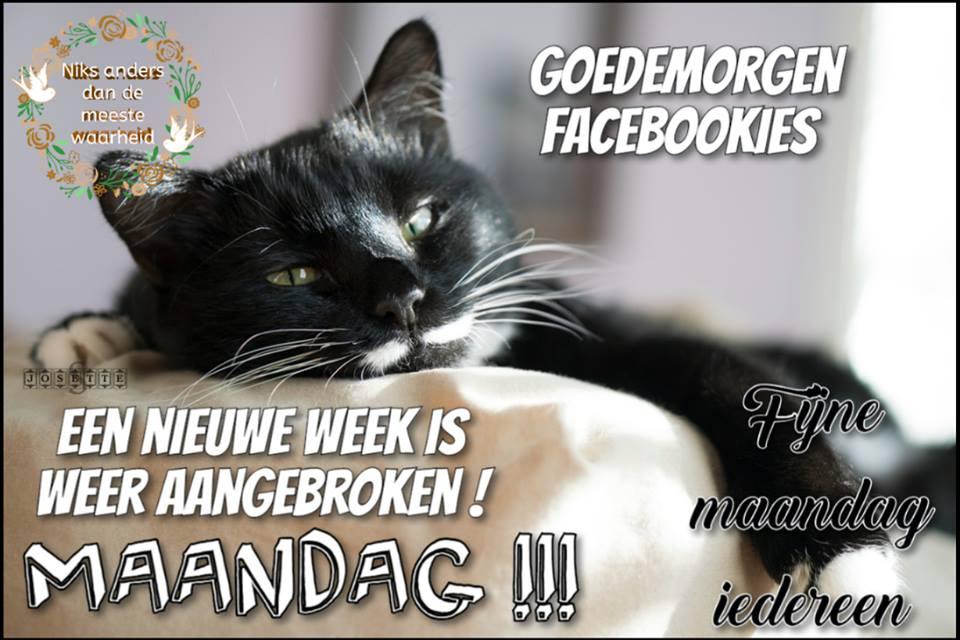 Goedemorgen Facebookies. Een nieuwe week is weer aangebroken ! Maandag !!! Fijne maandag iedereen