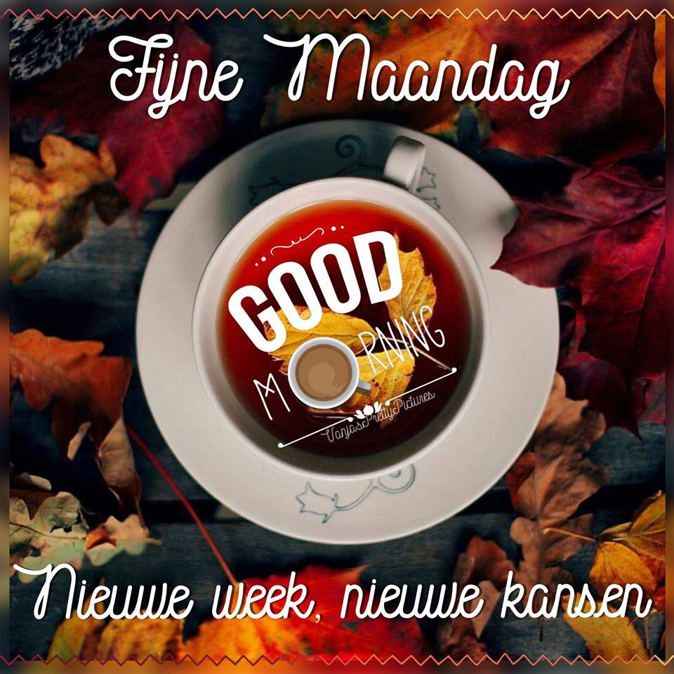 Fijne Maandag Good Morning Nieuwe week, nieuwe kansen.