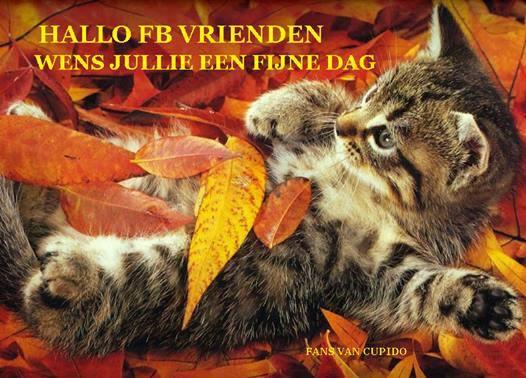Hallo FB vrienden, wens jullie een fijne dag