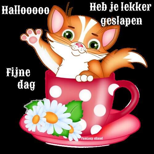 Hallooooo Heb je lekker geslapen Fijne dag