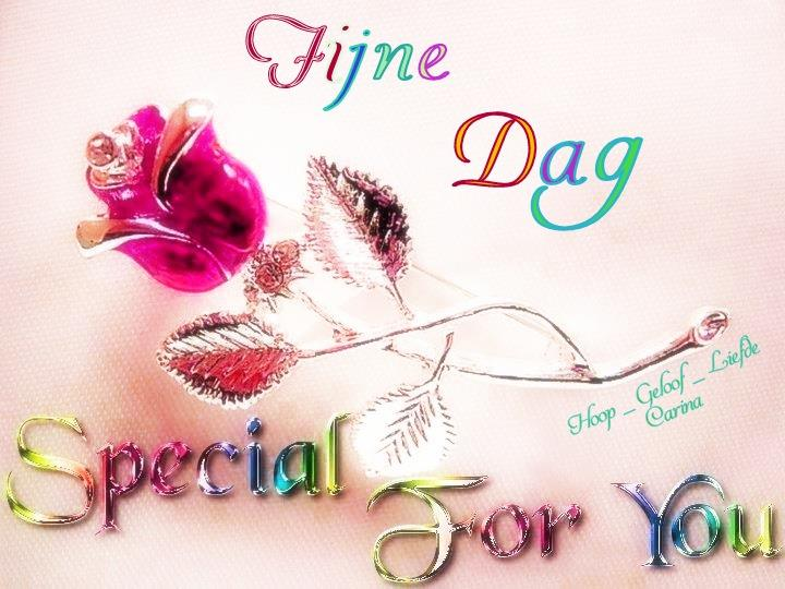 Fijne Dag, Special For You