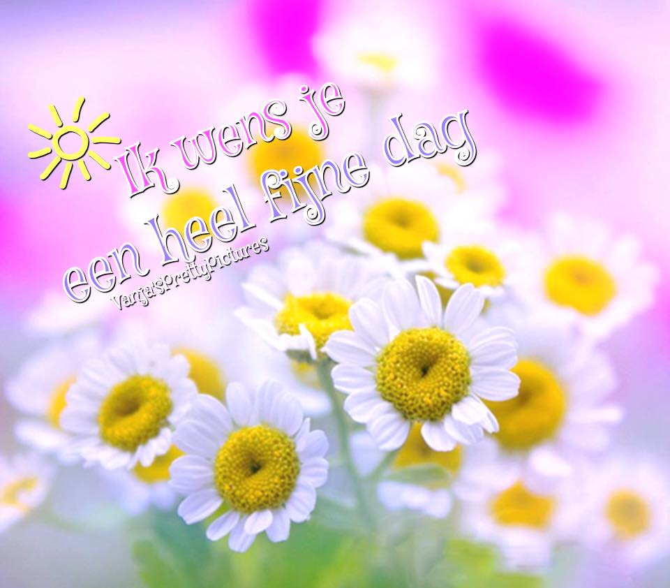 Ik wens je een heel fijne dag