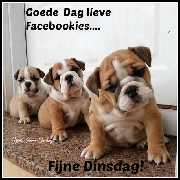 Goede Dag lieve Facebookies...