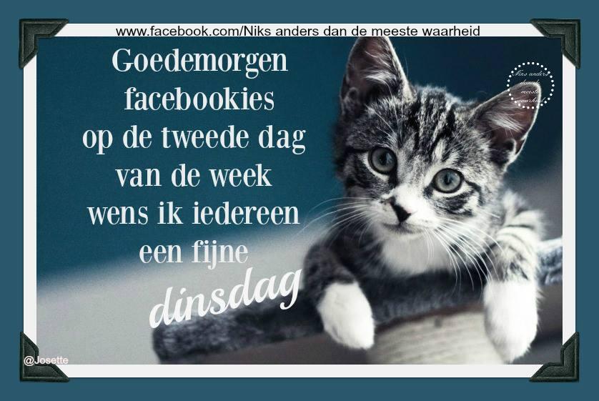 Goedemorgen facebookies op de tweede dag van de week, wens ik iedereen een fijne dinsdag Plaatjes