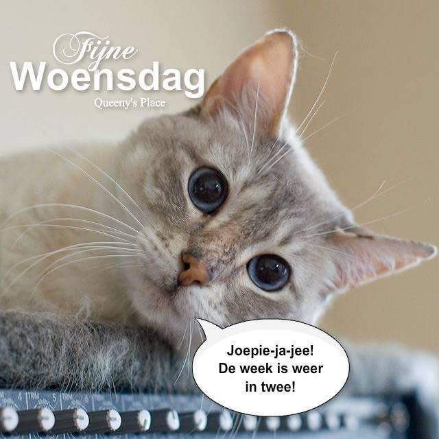 Fijne Woensdag Joepie-ja-jee! De week is weer in twee!
