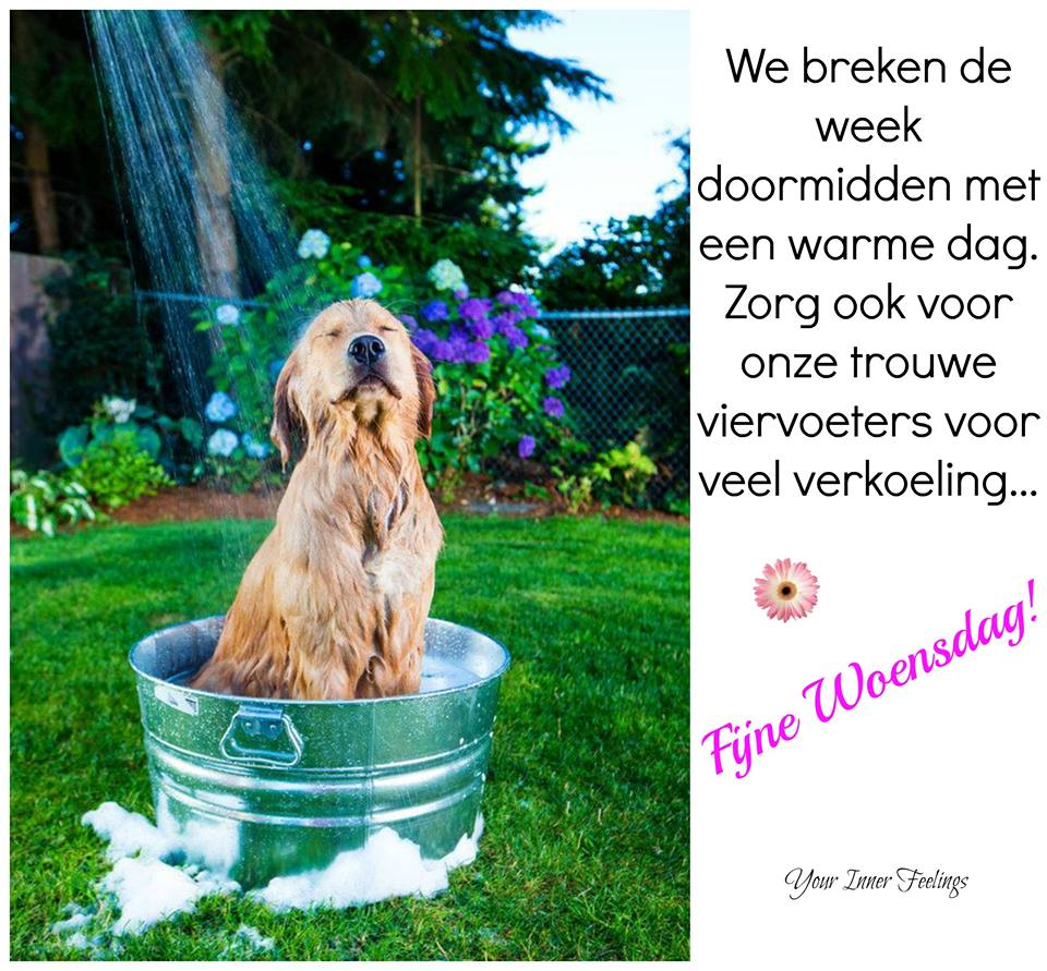 We breken de week doormidden...