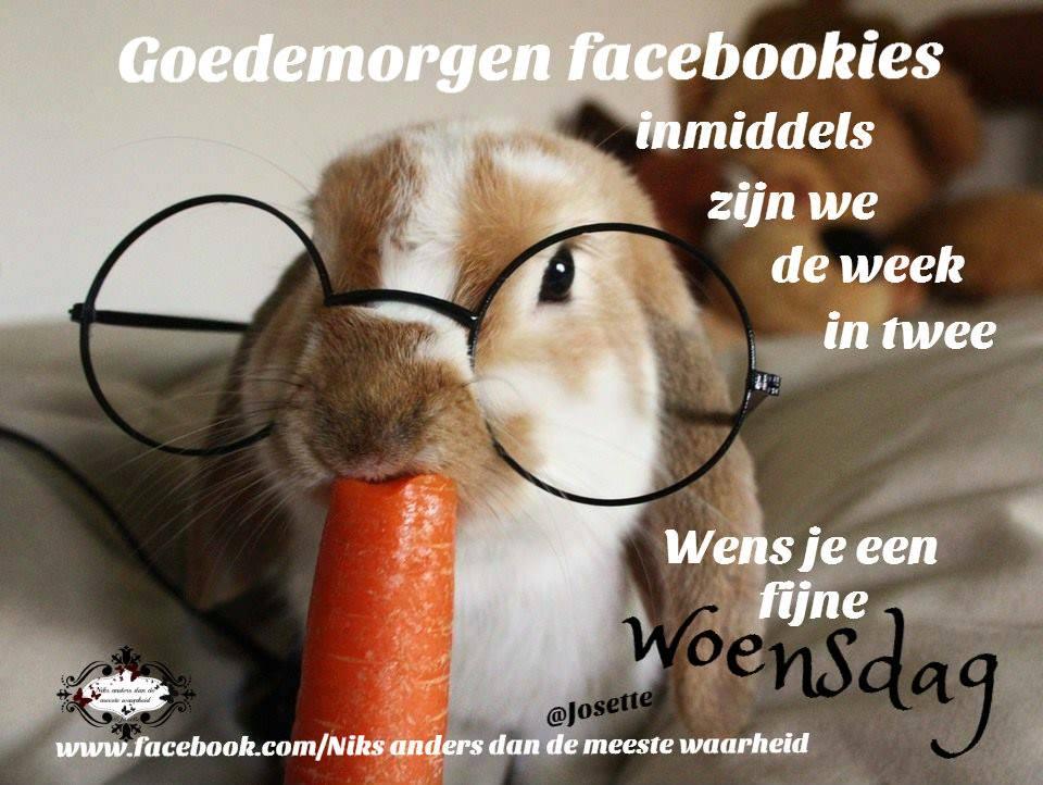 Goedemorgen facebookies inmiddels zijn we de week in twee Wens je een fijne woensdag Plaatjes