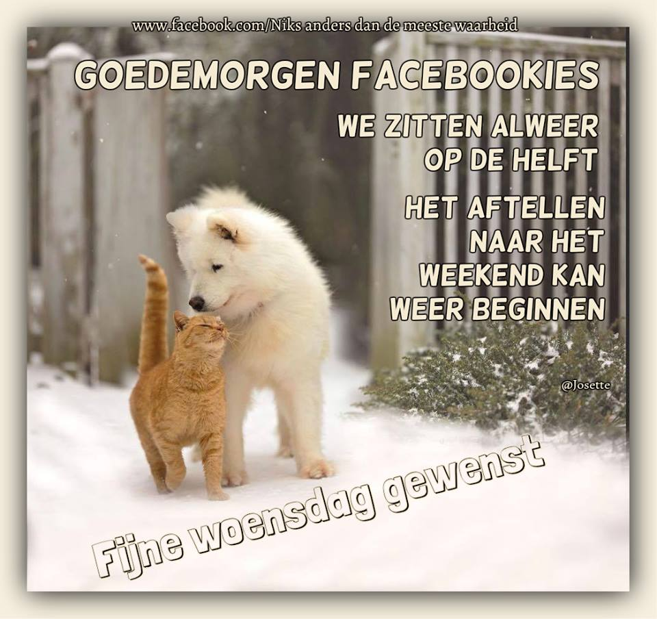 Goedemorgen Facebookies we...