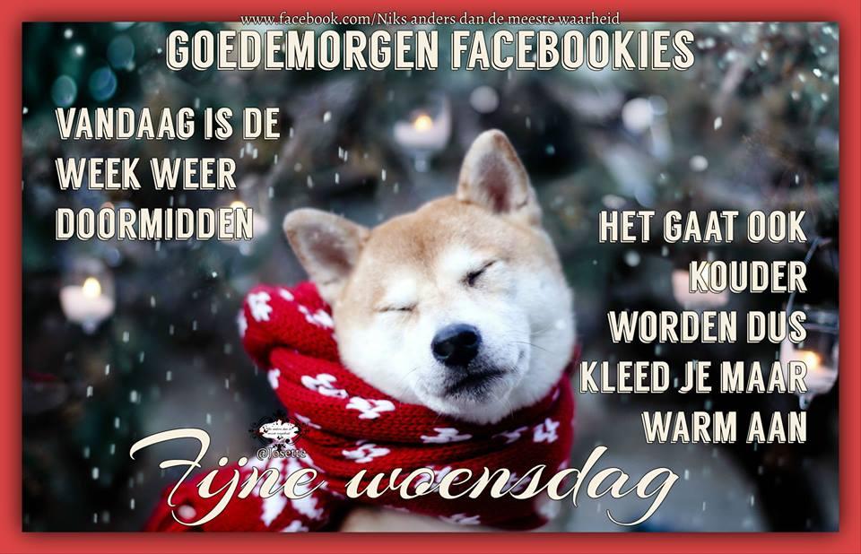 Goedemorgen Facebookies Vandaag is de week weer doormidden Het gaat ook kouder worden dus kleed je maar warm aan Fijne woensdag Plaatjes