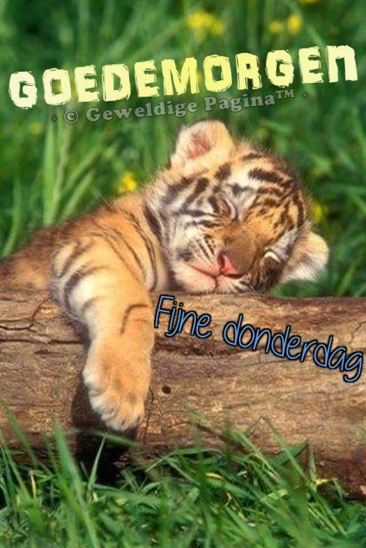 Goedemorgen Fijne donderdag