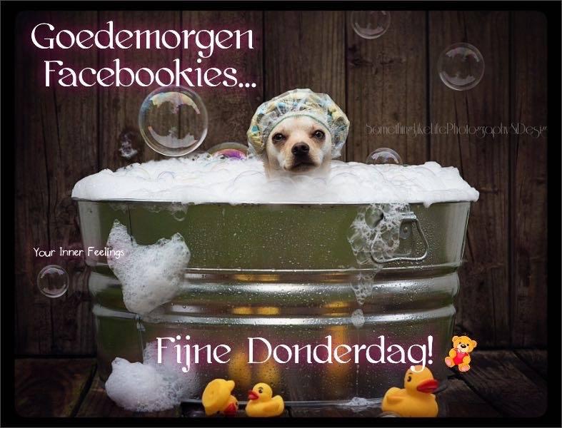 Goedemorgen Facebookies...