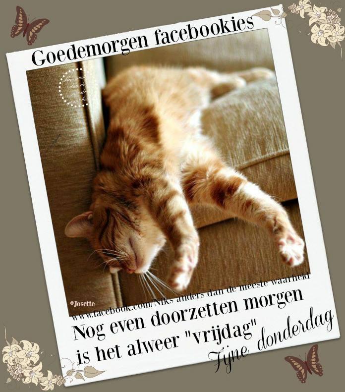 """Goedemorgen facebookies. Nog even doorzetten morgen is het alweer """"vrijdag"""". Fijne donderdag"""