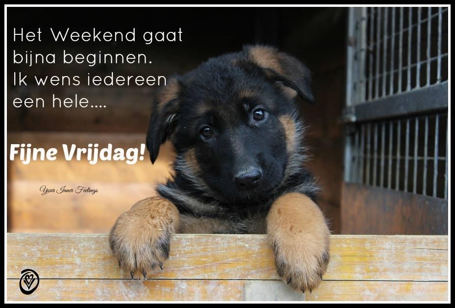 Het weekend gaat bijna beginnen. Ik wens iedereen een hele... Fijne Vrijdag!