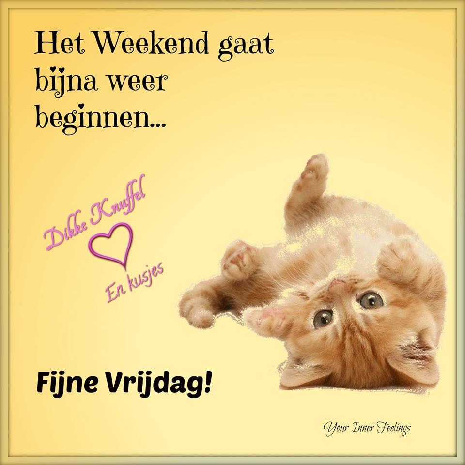 Het weekend gaat bijna weer beginnen... Fijne Vrijdag! Dikke knuffel en kusjes
