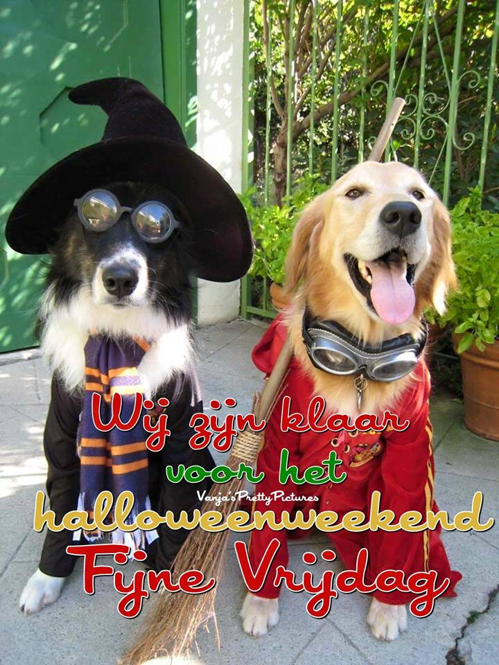 Wij zijn klaar voor het halloweenweekend. Fijne Vrijdag.