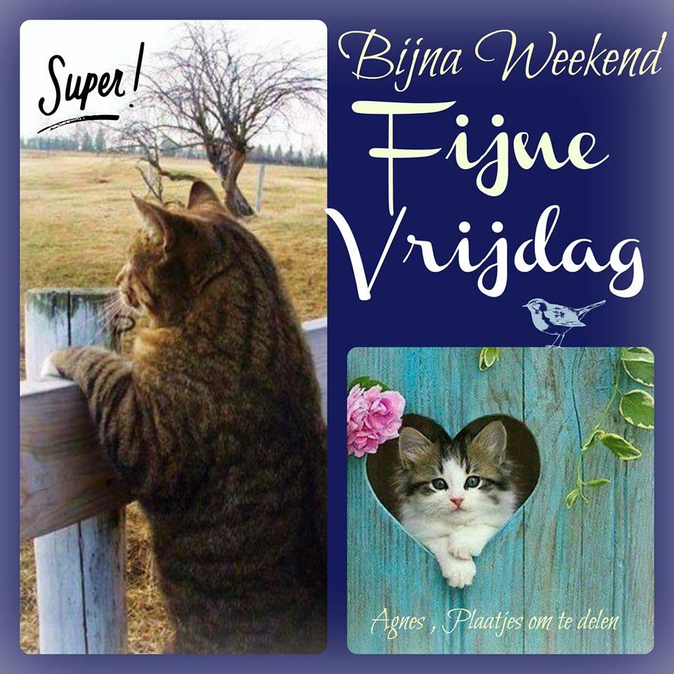 Super! Bijna weekend, Fijne Vrijdag