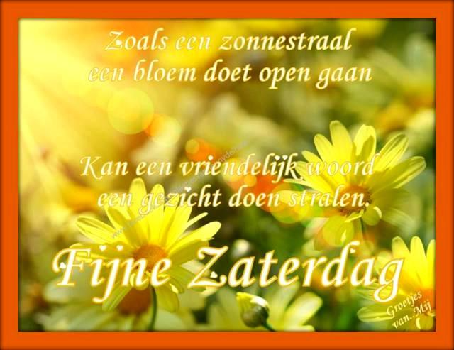 Zoals een zonnestraal een bloem doet open gaan, Kan een vriendelijk woord een gezicht doen stralen. Fijne Zaterdag