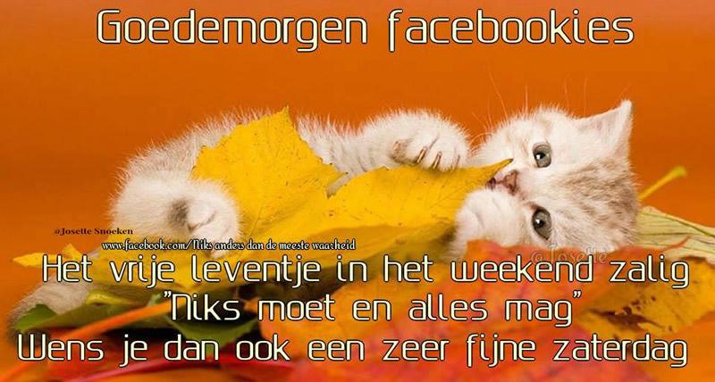 Goedemorgen facebookies. Het...