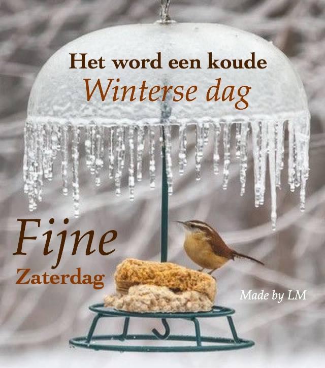 Het word een koude winterse dag. Fijne zaterdag