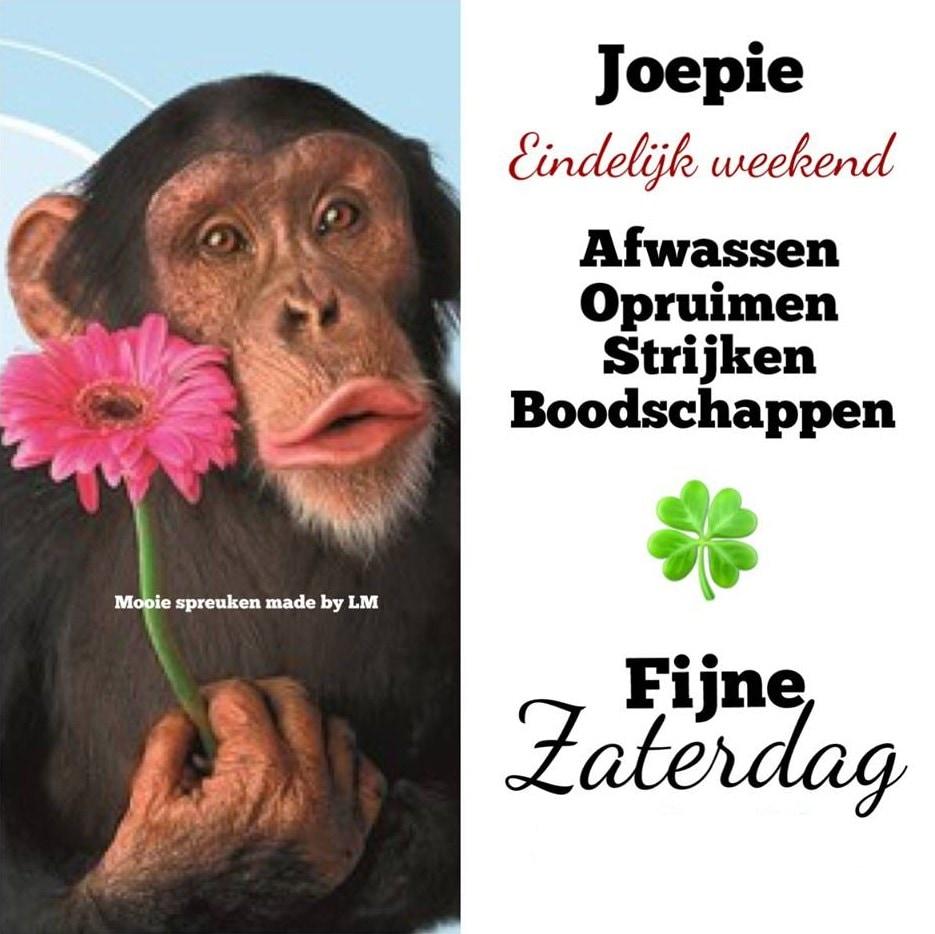 Joepie Eindelijk weekend Afwassen, opruimen, strijken, boodschappen Fijne Zaterdag facebookies