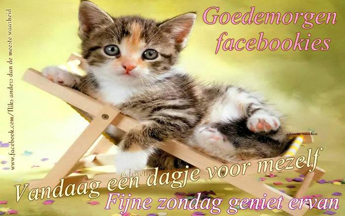 Goedemorgen facebookies Vandaag een dagje voor mezelf Fijne zondag geniet ervan Plaatjes