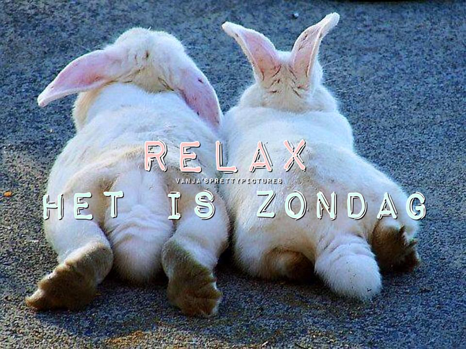 Relax. Het is Zondag