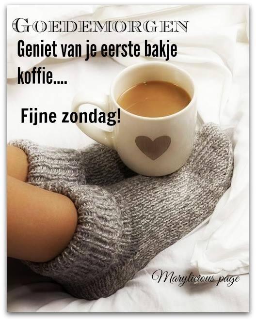 Goedemorgen Geniet van je...