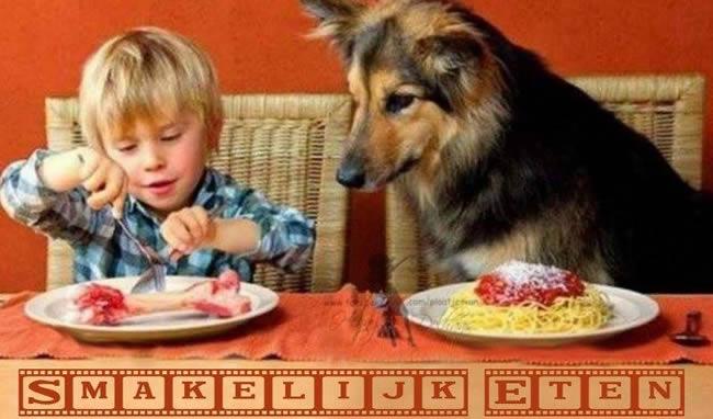 Hond Kind Bot Spaghetti Bord Grappig Eten Eet Smakelijk