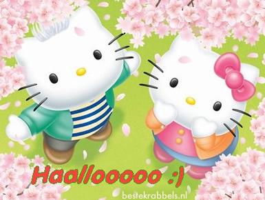 Haallooooo :)