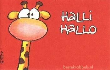 Halli Hallo
